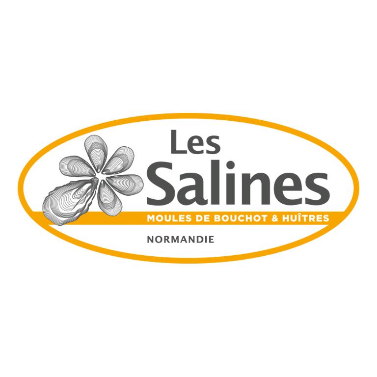 revelations-agence-communication-logo-les-sallines